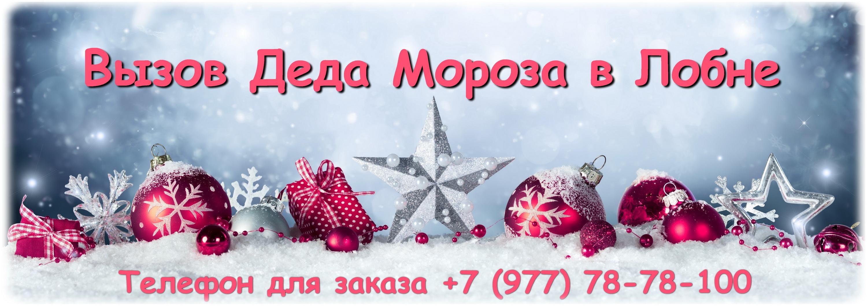 Дед Мороз Лобня - вызов на дом, в школу, детский сад.